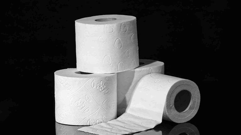 List of great toilet papers