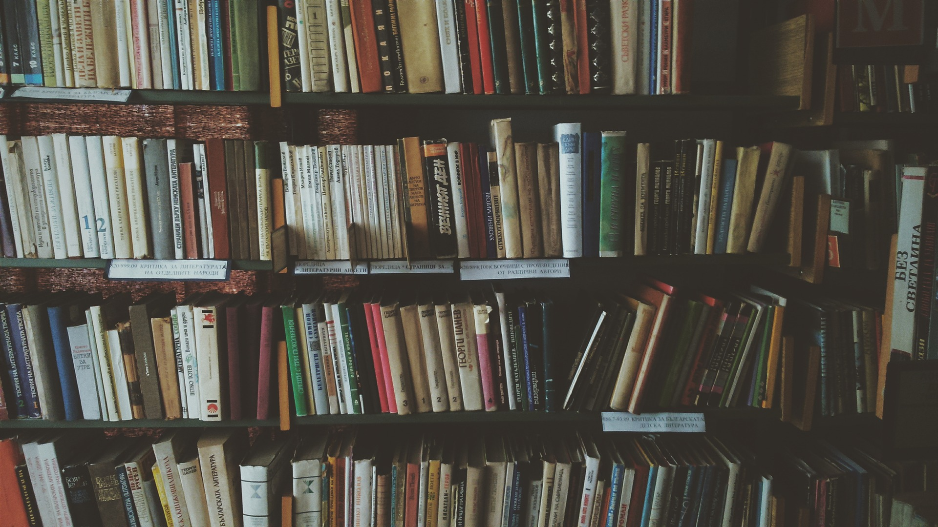 How to Make a Home Library (Tips)