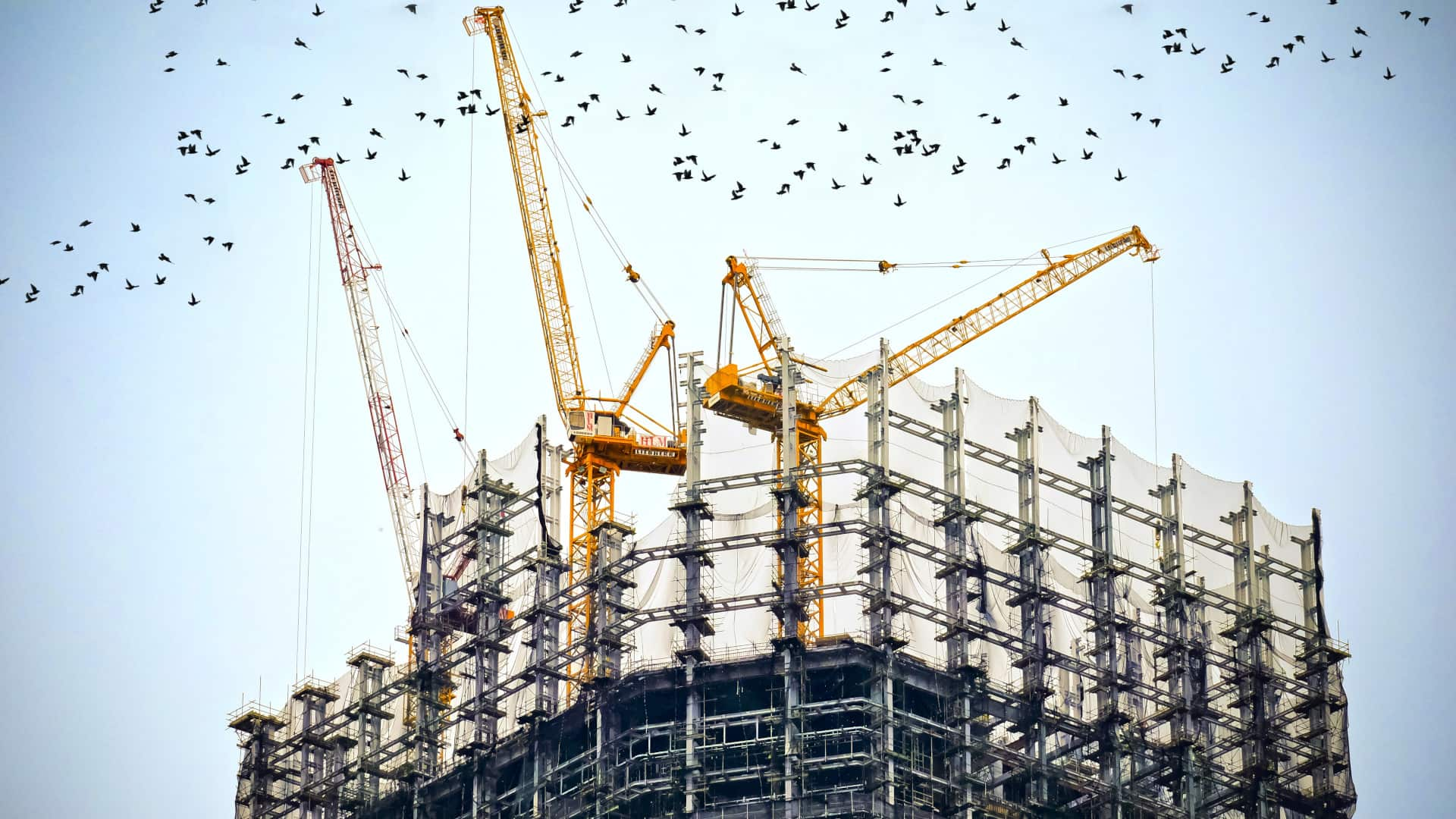 Here is how construction affects the development of the economy